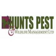 Pest Control Huntingdon